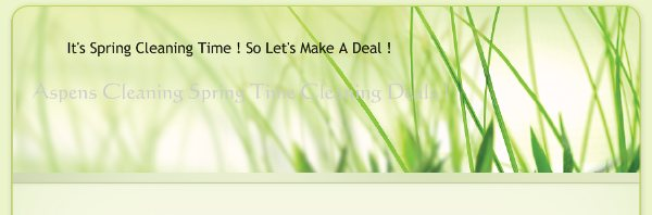 Aspens Cleaning Spring Time Cleaning Deals ! - It's Spring Cleaning Time ! So Let's Make A Deal !