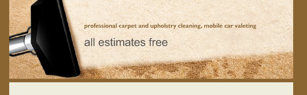 professional carpet and upholstry cleaning, mobile car valeting services - all estimates free
