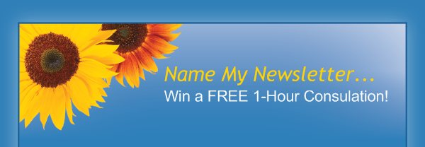 Name My Newsletter...  - Win a FREE 1-Hour Consulation!