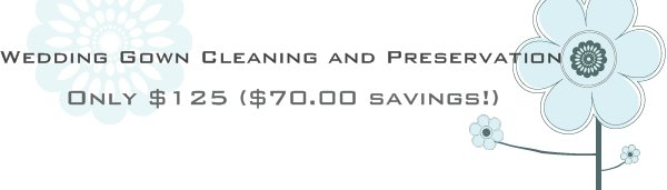 Wedding Gown Cleaning and Preservation - Only $125 ($70.00 savings!)
