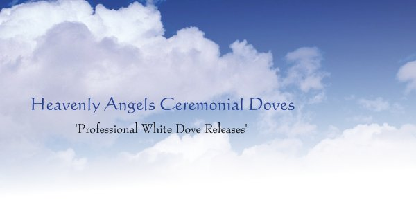 Heavenly Angels Ceremonial Doves -              'Professional White Dove Releases'